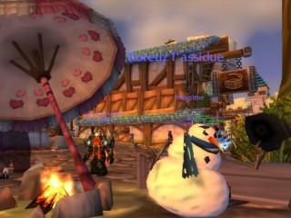 Guide de la fête du Voile d'hiver